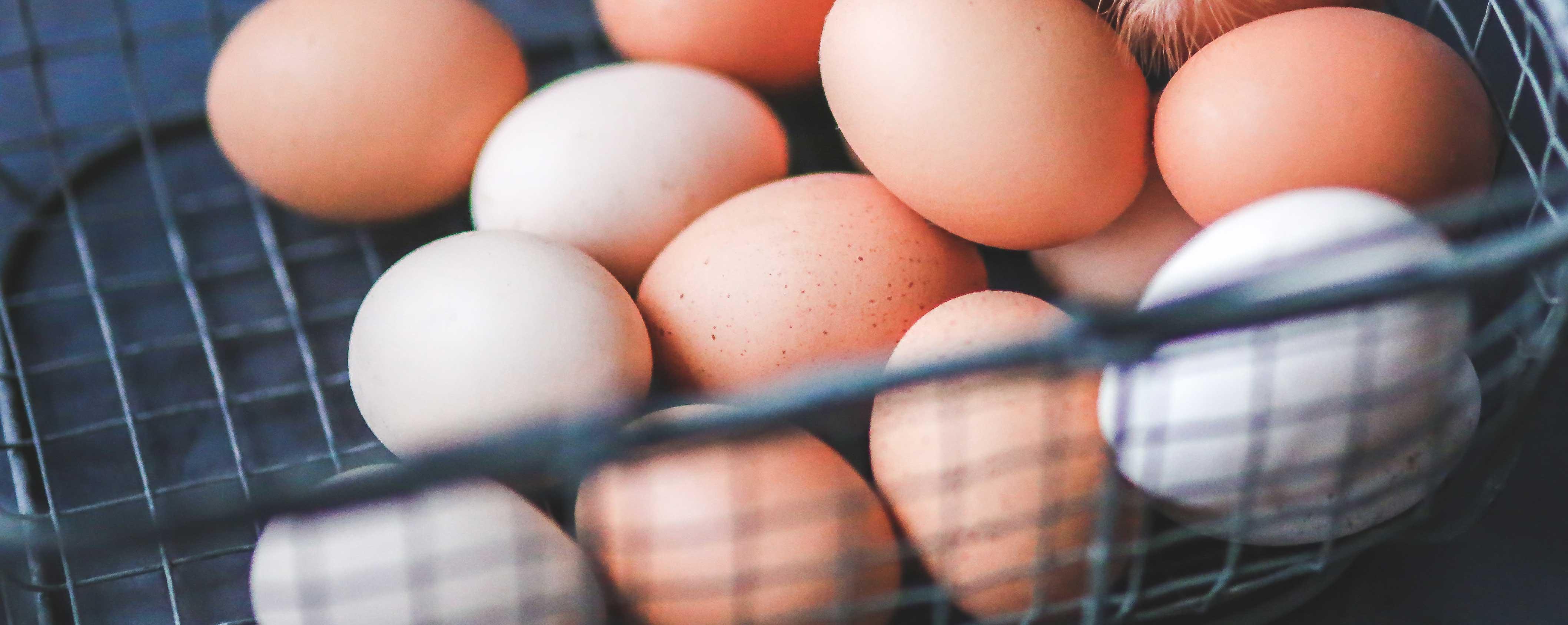 eggs-in-basket